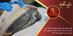 صادرکنندگان ماهی خاویاری