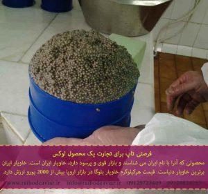 فروش خاویار بلوگا در ایران