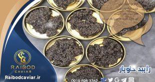 خرید و فروش خاویار در ایران